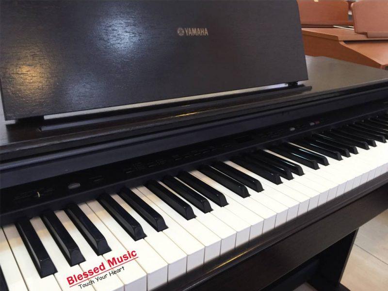 Đàn Piano Điện Yamaha YDP 101
