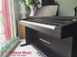 Đàn Piano Điện Roland HP 230