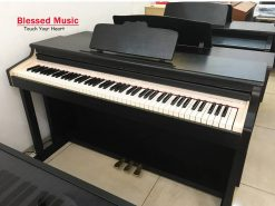 Đàn Piano Điện Apollo KTY 8000