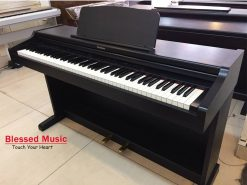 Đàn Piano Điện Techinics SX PX 222