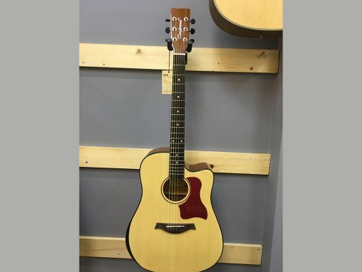 Đàn Guitar Tangle Wood EG 10