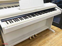 Đàn Piano điện Roland RP 501 RW